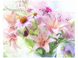 Pink Bouquet Prints by Judy Stalus