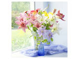 Lily Bouquet Prints by Judy Stalus