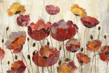 Poppies in the Rain Prints by Silvia Vassileva