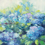 Bright Hydrangea II Prints by Julia Purinton
