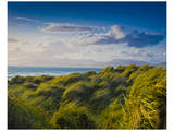 Ross Behy Sand Dunes, Ireland II Prints by Richard Desmarais