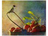Apples and Hummer Kunstdruck von Chris Vest