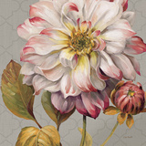 Classically Beautiful II Prints by Lisa Audit