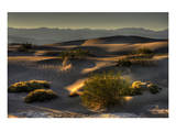 Stovetop Dunes, Death Valley Posters by Richard Desmarais
