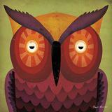 Ryan Fowler - Owl WOW Plakát