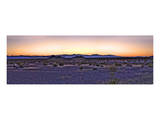 Nevada Sunset Prints by Richard Desmarais