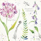 Soft Nature III Plakater af Anne Tavoletti