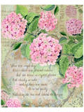 Pink Hydrangea I Print by Roberta Collier Morales