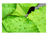 Water Droplets on Lilly Pads Posters by Jan Michael Ringlever