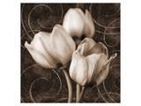 Sepia Tulip I Art by Christine Zalewski