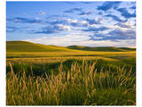 La Palouse Steptoe at Dawn Posters by Richard Desmarais