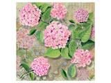 Pink Hydrangea II Prints by Roberta Collier Morales
