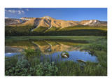 Rocky Mountain Reflection at Bow Summit II Art by Mike Grandmaison
