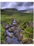 Mountain Creek, Ireland Posters by Richard Desmarais