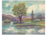 River Scape II Kunstdrucke von Victor Valla