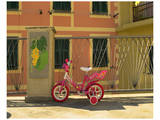 Manarola Child's Tricycle Prints by Richard Desmarais