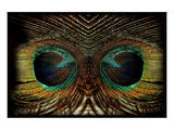 Feathered Owl Prints by Jan Michael Ringlever