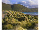 Ross Behy Sand Dunes, Ireland I Posters by Richard Desmarais