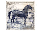 Black Horse II Prints by Irena Orlov