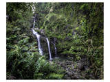 Waikani Falls Hana Highway I Prints by Michael Polk