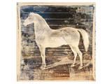 White Horse Print by Irena Orlov