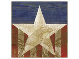 Stars&Stripes Posters by Alan Hopfensperger