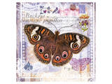 Butterfly Artifact Lilac Prints by Alan Hopfensperger