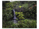 Kopilua Falls Hana High Posters by Michael Polk
