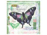 Butterfly Artifact Green Prints by Alan Hopfensperger