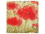 Abstract Red Poppy Trio Prints by Irena Orlov