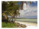 Asan Bay Guam Posters by Michael Polk