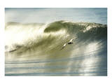 Surfing Pelican Affiche par Steve Munch
