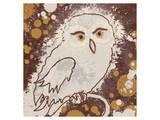 Owl II Kunst van Irena Orlov