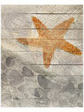 Sea Star Prints by Irena Orlov