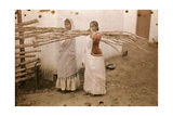 Two Young Indian Girls Carry Sugar Cane Photographic Print by Melville Chater