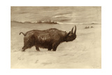 A Painting of a Woolly Rhinoceros Tichorhinus of the Pleistocene Age Giclee Print by Charles R. Knight