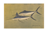 A Painting of a Pair of Carnivorous Marlins Reproduction procédé giclée par Hashime Murayama