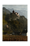 A View of Vaduz Castle in the Swiss Alps Photographic Print by Hans Hildenbrand