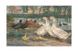 A Painting of Black East India Ducks and Pekin Ducks Giclee Print by Hashime Murayama