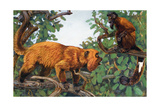 Painting of a Red Howler Monkey and a Bearded Saki Monkey Giclee Print by Elie Cheverlange