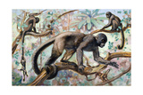 Painting of Wooly Monkeys in a Forest Setting Giclee Print by Elie Cheverlange