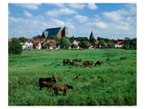 Marsh old town, Verden Germany Prints