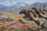 Two Wolverines Scope Out a Pack of Caribou in Hopes of Catching One Giclee Print by Walter A. Weber