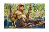 Painting of a Proboscis Monkey in a Borneo Rain Forest Giclee Print by Elie Cheverlange