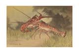 Painting of Two Dueling Crayfish Wydruk giclee autor Hashime Murayama