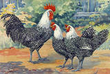 Three Silver Campine Chickens Originally from Beligum's Campine Region Giclée-tryk af Hashime Murayama