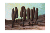 This Particular Slime Mold Is Widely Distributed But Rarely Collected Giclee Print by William H. Crowder