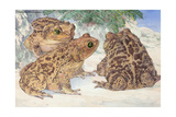 A View of the Patterned Cuban Toads Giclee Print by Hashime Murayama
