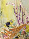 A Painting of West Indies Coral Reef Sea Life Giclée-tryk af Else Bostelmann