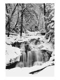 Country Stream in Winter, Michigan Print